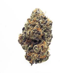 purplepunch