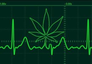 Marijuana-Heart-Rate