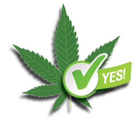 VOTE_WEED