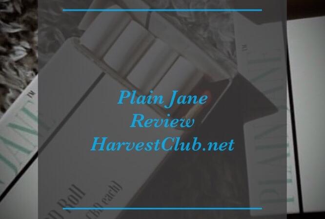 CBD – Harvest Club